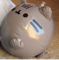 Pusheen Beach Ball