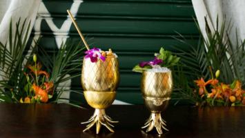 The Pineapple Co. Tumbler & Shot Glasses Set