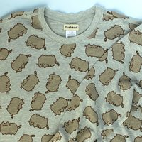 Pusheen Sweatshirt -Fall 2016