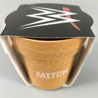 WWE Mitch Plant