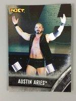 NXT Austin Aries trading card