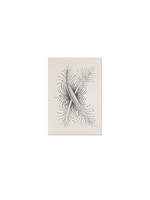 D.L. & Co. Feather stationary 6 pack