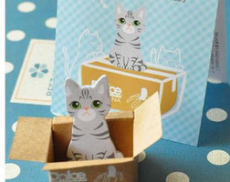 Grey Cat In A Box Sticky Notes