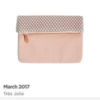 Ipsy March 2017 - bag only