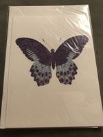D.L.&Co Butterfly stationary