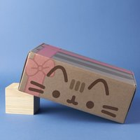 Pusheen Winter 2016 Box - BOX ONLY