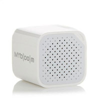 MyBoom Mini Wireless Speaker