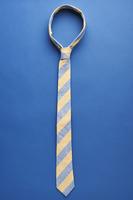 Dazi USA the Collegiate Tie