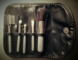 ELF travel brush set