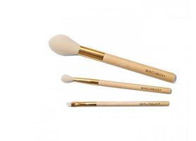 Birchbox Makeup Brushes