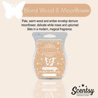 Scentsy Blonde Wood & Moonflower Wax Bar