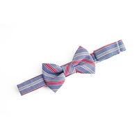 Blue and Red Stripe Baby Bow Tie