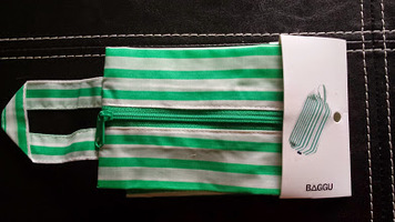 Baggu 3D Mint Striped Bag (Small)