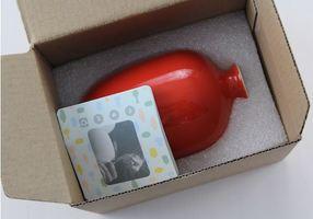 Middle Kingdom Mini Plum Vase in Coral Red – Value $20