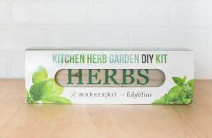 Kitchen Herb Garden DIY Kit