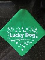 Lucky Dog bandana
