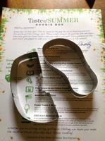 Taste of Summer Watermelon slice & Flip-flop Cookie cutters