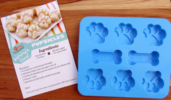Silicone Frozen Treat Maker With Magnetic Pupsicles Recipe Card