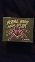 Real bug mini dig kit