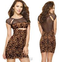 Dreamgirl Leopard Illusion Dress