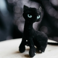 Black Cat Buddy Catnip Toy