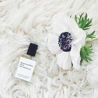 Maison Louis Marie fragrance