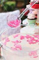 Pink Flamingo Reusable Ice Cubes