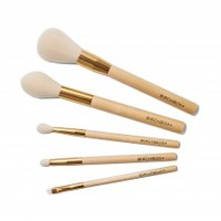 Birchbox 5 Piece Brush Set
