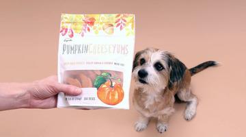 pumpkin cheese yums
