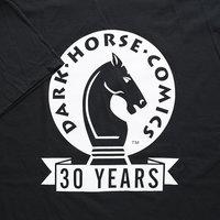 30th Anniversary Dark Horse Comics Shirt