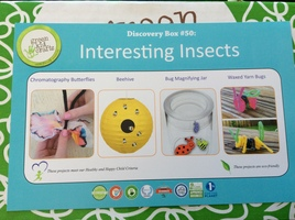 Green Kid Crafts Interesting Insects Discovery Box #50