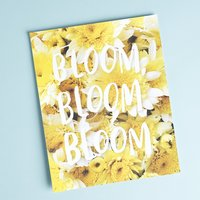 Bloom Bloom Bloom art print