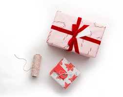 Knot & Bow Candy Cane and Poinsettia Gift wrap
