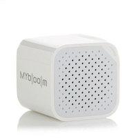 MyBoom Mini Wireless Speaker