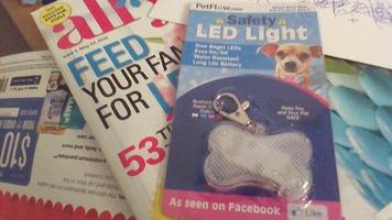petflow led safety light dog walk leash
