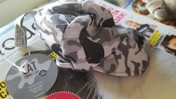 Cat Camo Catnip Hat Toy