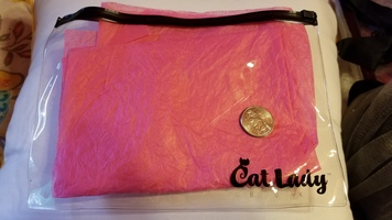 Clear Cat Lady pouch / case / makeup bag