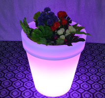 Plastic Planter with Lights