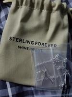 Sterling Forever Wishbone Necklace