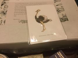 Tokyo Milk ostrich card