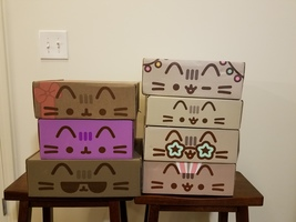 Set of 7 empty Pusheen boxes
