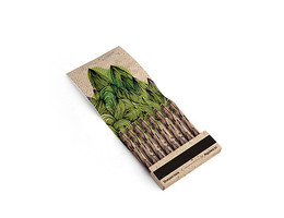 Kikkerland Tree-Friendly Recycled Pencils (small pack of 8)