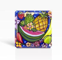 MEXICAN FOLK ART MAGNET TROPICAL FRUIT GLASS