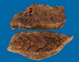 Butcher's Block Bones 100% Natural Roasted Beef Steak