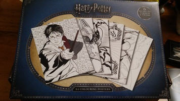 Harry Potter Coloring Poster