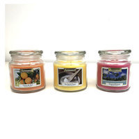 Tropical Retreat Large Seaside Retreat Candle by Aromance