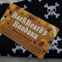 Barkbeard's Bandana