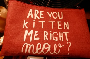 RED MAKE UP POUCH ARE YOU KITTEN ME RIGHT MEOW
