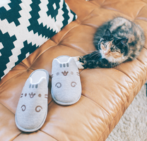Pusheen slippers