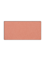 Mary Kay Mineral Cheek Color in Shy Blush